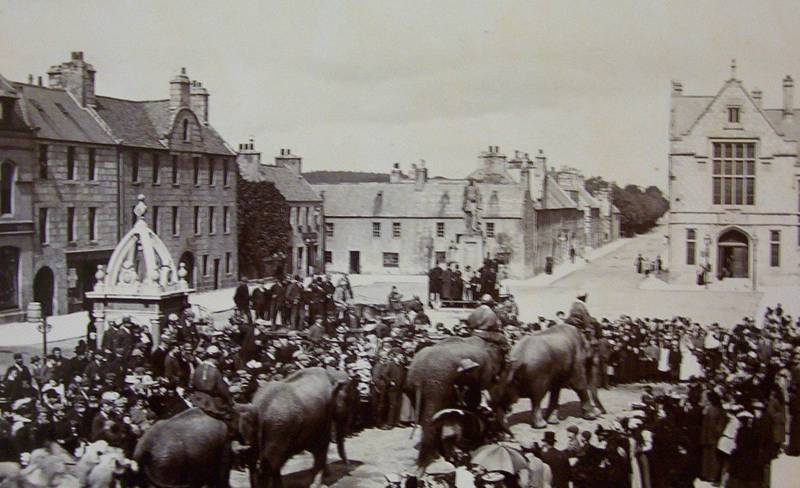 Huntly Page - Elephants come to Huntly